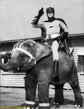 BatmanElephant